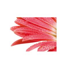 Tischset Picture Flower