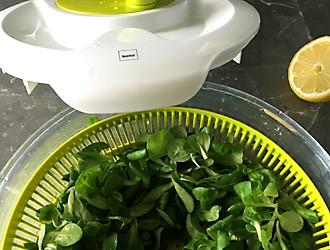 After-Work-Snack Feldsalat in Salatschleuder kela