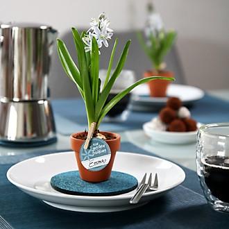 Tischdeko mit Blaustern - Teaser