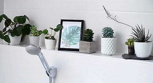 Grünpflanzen auf Ablagefläche Jungle Style