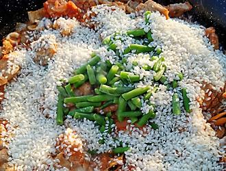 Paella zubereiten Reis zugeben